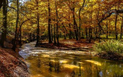 Innovaties op het gebied van grondwaterbescherming
